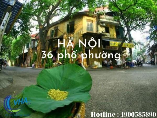 Cùng Vha.vn tìm hiểu giá vé bay Nha Trang đi Hà Nội