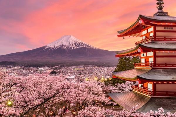 Nhật Bản - Bốn mùa cảm nhận